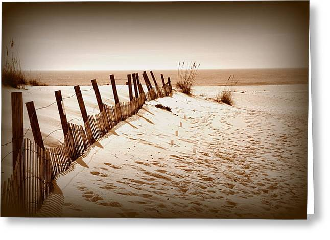 The Beach In Winter Greeting Card by Toni Abdnour