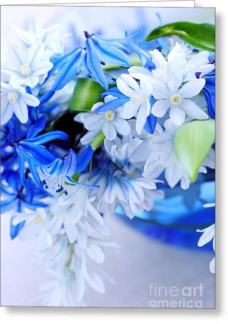 The Beautiful  Blue Flower Greeting Card