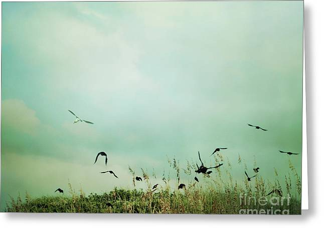The Beautiful Flight Greeting Card by Sharon Coty