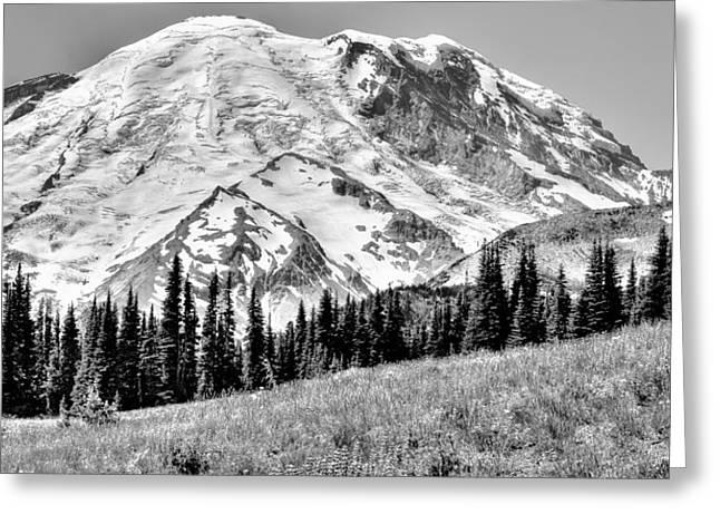 The Beautiful Mount Rainier At Sunrise Park - Washington State Greeting Card by David Patterson