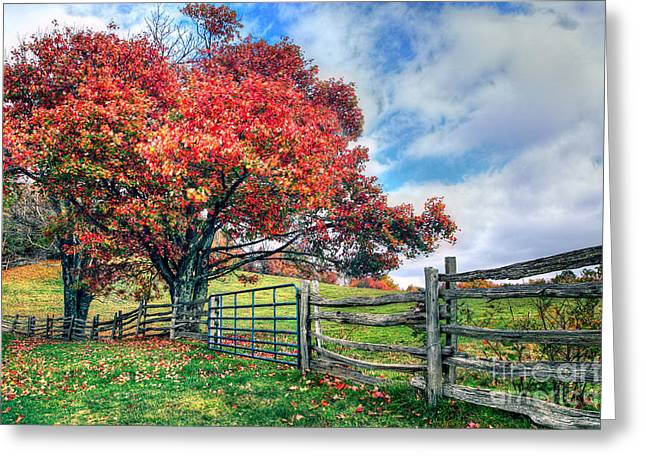 The Beauty Of Fall I - Blue Ridge Parkway Greeting Card