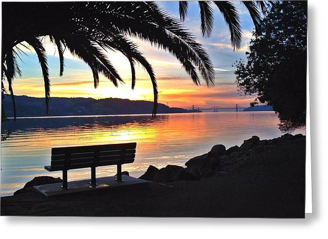 The Bench Greeting Card by Brian Maloney