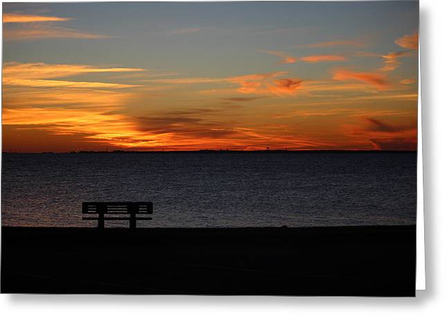 Greeting Card featuring the photograph The Bench by Faith Williams