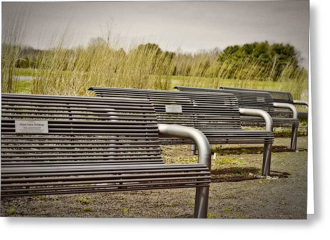 The Benches Greeting Card by Tom Gari Gallery-Three-Photography