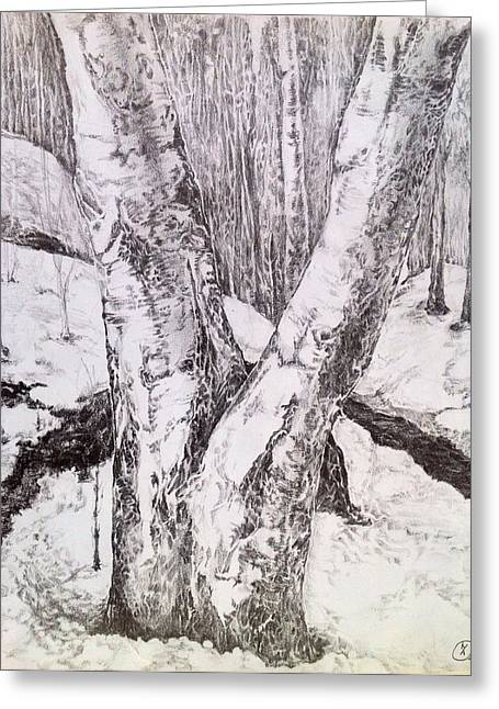 Greeting Card featuring the drawing The Birches by Iya Carson