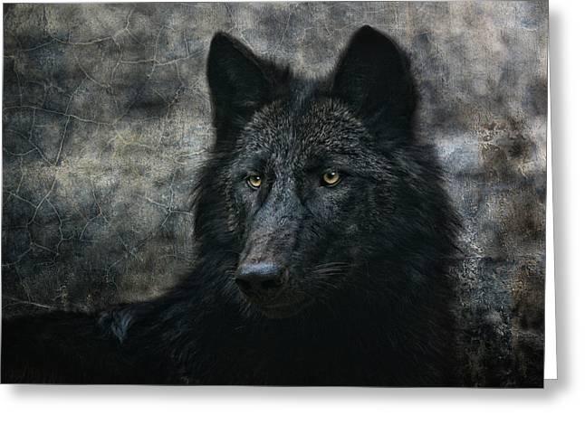 The Black Wolf Greeting Card by Joachim G Pinkawa