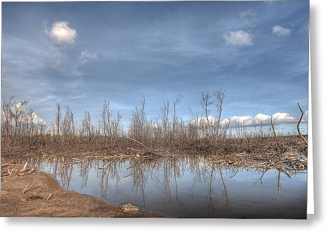 The Blue Water Desert Greeting Card by Imago Capture