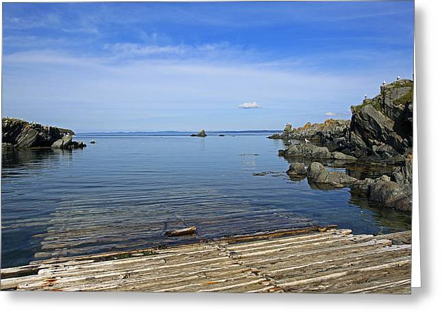 The Boat Launch Greeting Card by Qing