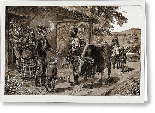 The Boers And Their Treatment Of The Blacks Two Years Wages Greeting Card by Litz Collection