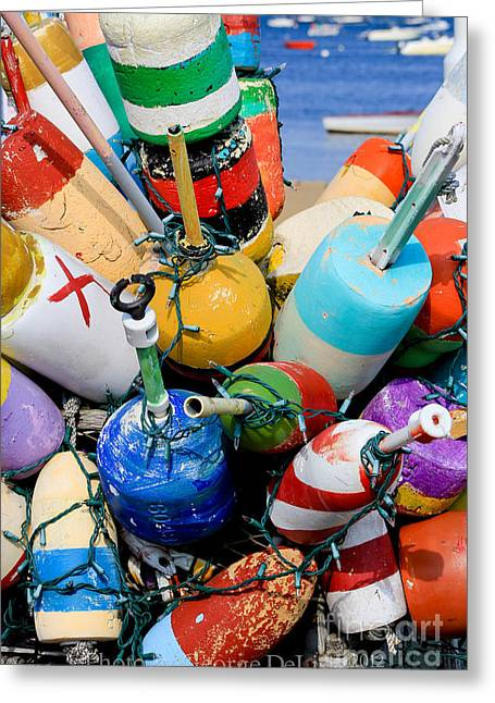 The Bouys Are Back In Town Greeting Card
