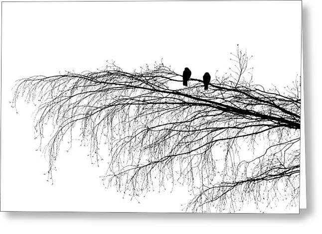 The Branch Of Reconciliation Greeting Card by Alexander Senin