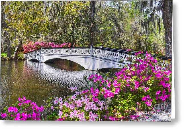 The Bridge At Magnolia Plantation Greeting Card