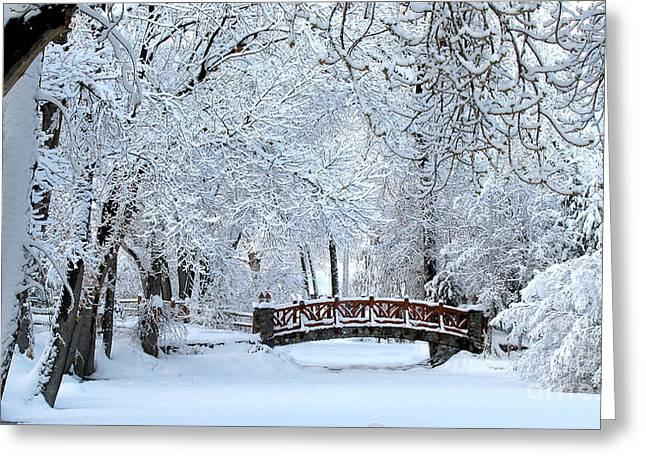 The Bridge In Winter Greeting Card