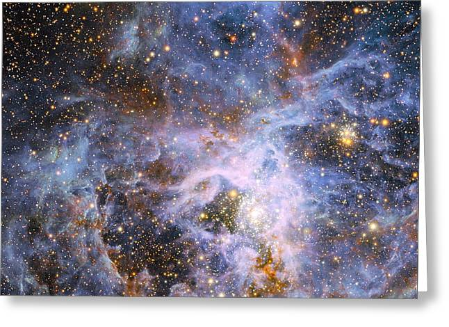 The Brilliant Star Vfts 682 In The Lmc Greeting Card by Nasa