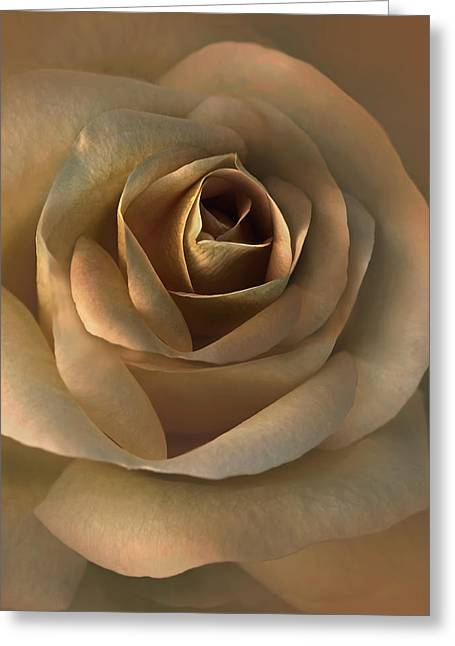 The Bronze Rose Flower Greeting Card by Jennie Marie Schell