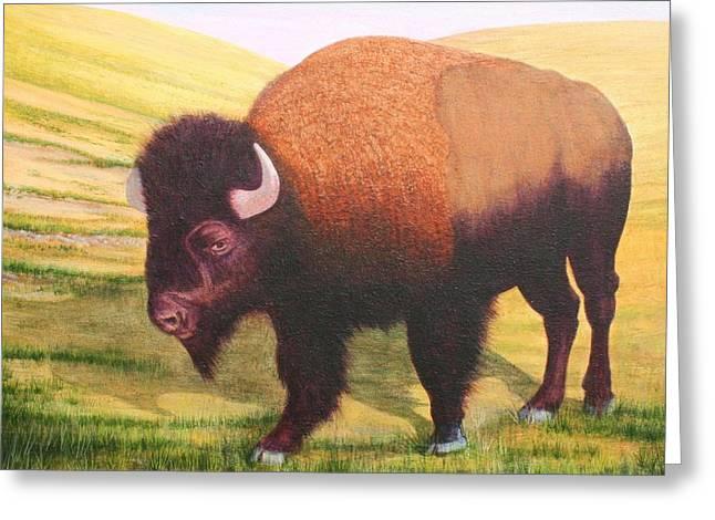 The Buffalo Greeting Card by J W Kelly