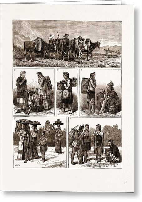 The Burmese Frontier Difficulty Greeting Card by Litz Collection