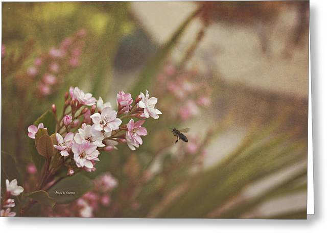 The Busy Bee Greeting Card by Angela A Stanton