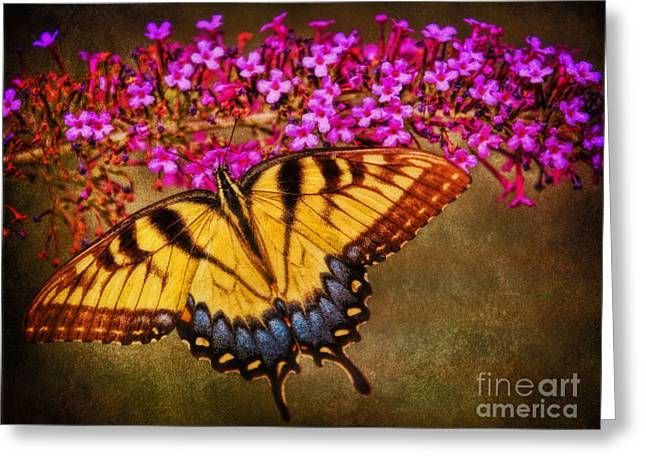 The Butterfly Effect Greeting Card by Elizabeth Winter