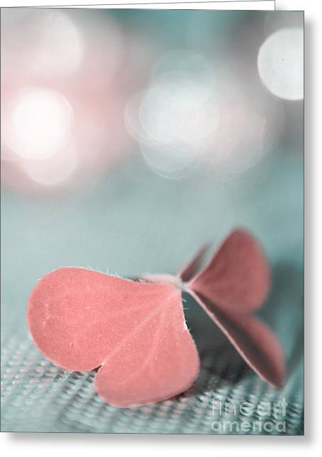 The Butterfly P02b Greeting Card by Aimelle