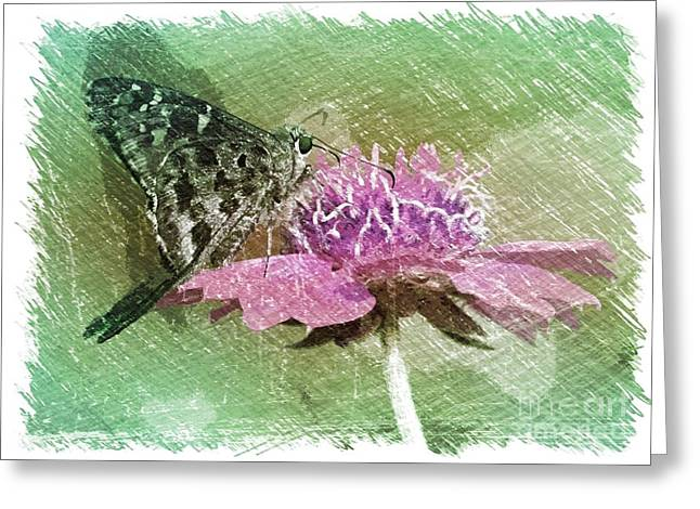 The Butterfly Visitor Greeting Card by Carol Groenen