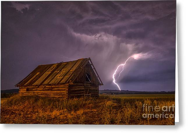 The Cabin Greeting Card by Darcy Shawchek