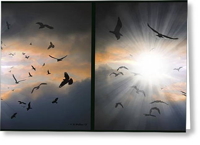 The Call - The Caw - Gently Cross Your Eyes And Focus On The Middle Image Greeting Card by Brian Wallace