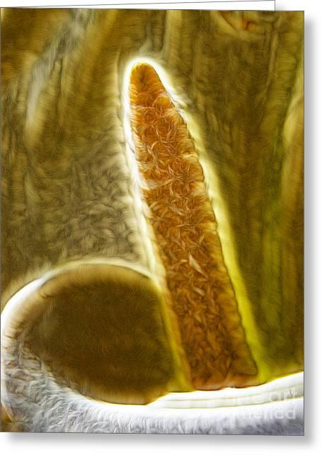 The Calla Lilies  Greeting Card