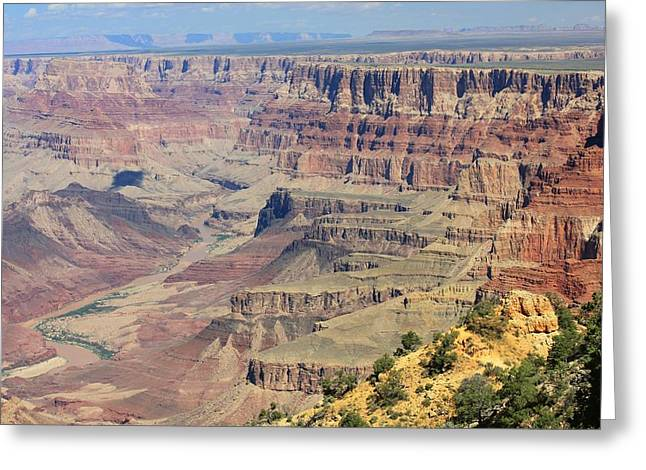 The Canyon Desert View Greeting Card by Douglas Miller