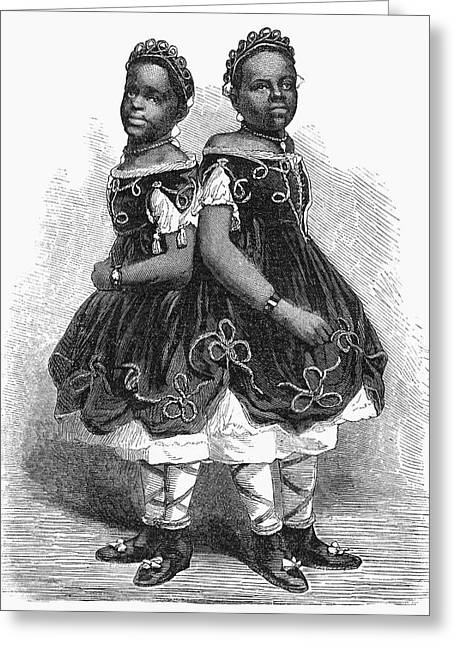 The Carolina Twins, 1866 Greeting Card by Granger