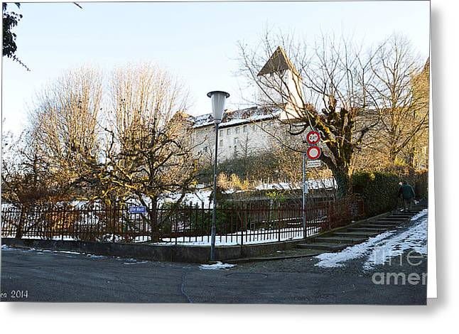 Greeting Card featuring the photograph The Castle In Winter Light by Felicia Tica