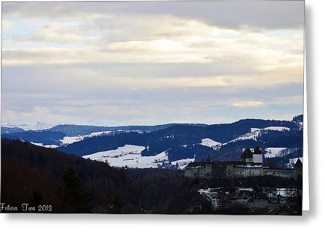Greeting Card featuring the photograph The Castle In Winter Look 2 by Felicia Tica
