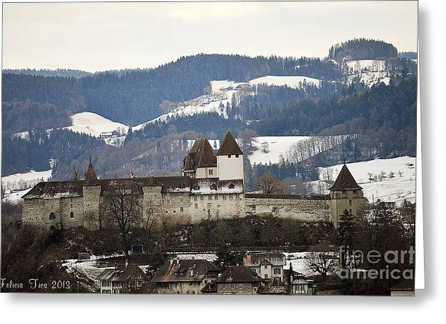 Greeting Card featuring the photograph The Castle In Winter Look by Felicia Tica
