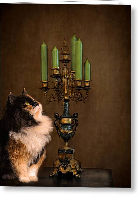 The Cat And The Candelabra Greeting Card by Jai Johnson