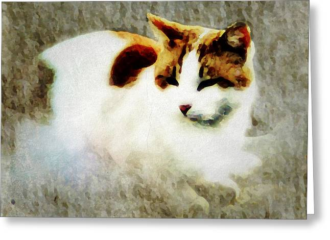The Cat Greeting Card by Persephone Artworks