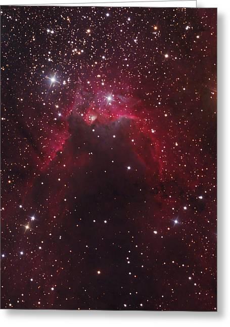 The Cave Nebula Located Greeting Card by Bob Fera