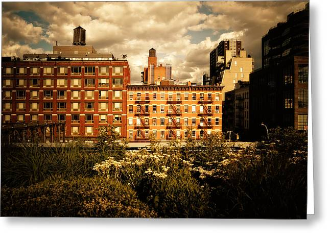 The Chelsea Skyline - High Line Park - New York City Greeting Card by Vivienne Gucwa