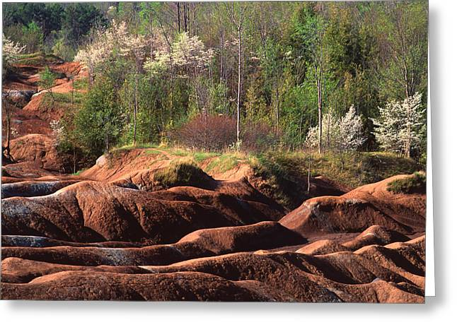 Greeting Card featuring the photograph The Cheltenham Badlands by Gary Hall