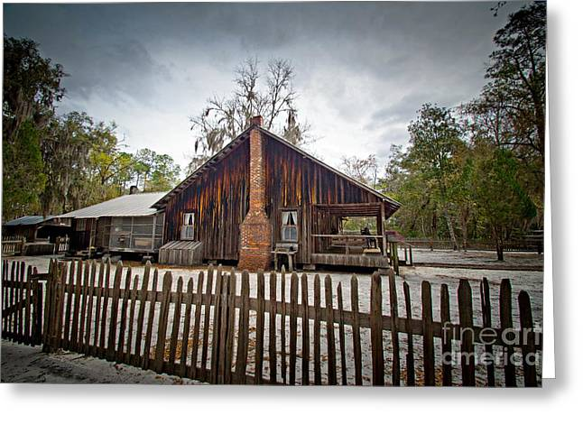 The Chesser Homestead Greeting Card by Southern Photo