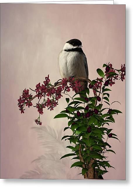 The Chickadee Greeting Card by Davandra Cribbie