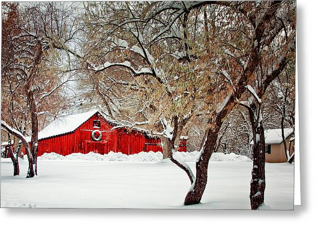 The Christmas Barn Greeting Card by Teri Virbickis