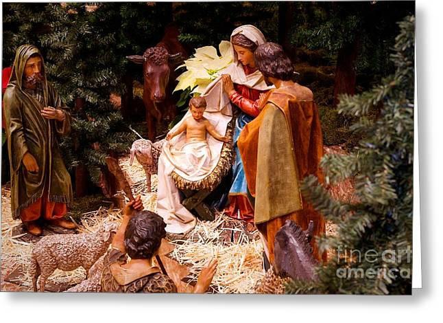 The Christmas Creche At Holy Name Cathedral - Chicago Greeting Card