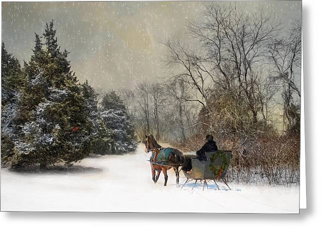 The Christmas Sleigh Greeting Card by Robin-Lee Vieira