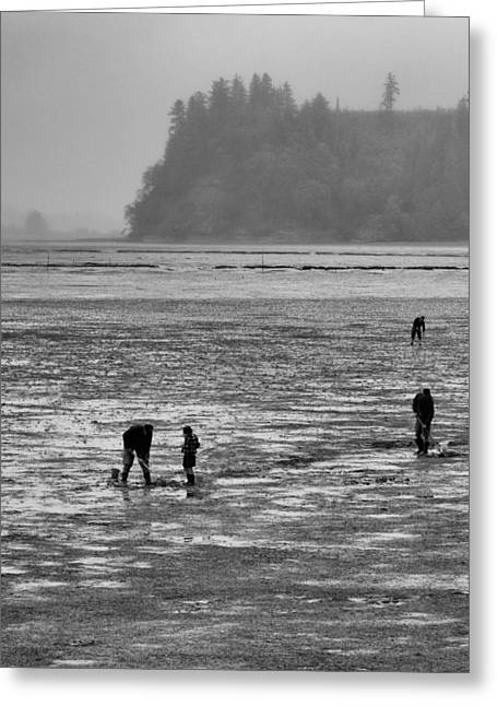 The Clam Diggers Greeting Card by Bob Stevens