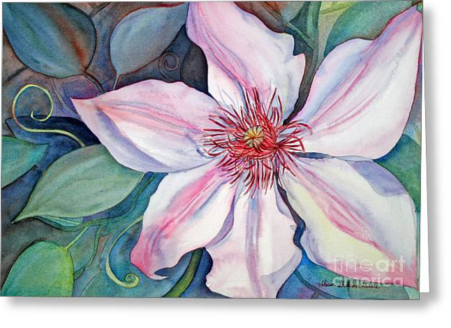 The Clematis Greeting Card