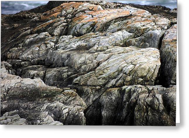 The Cliffs Greeting Card by Marcia Lee Jones