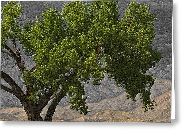 The Climbing Tree Greeting Card