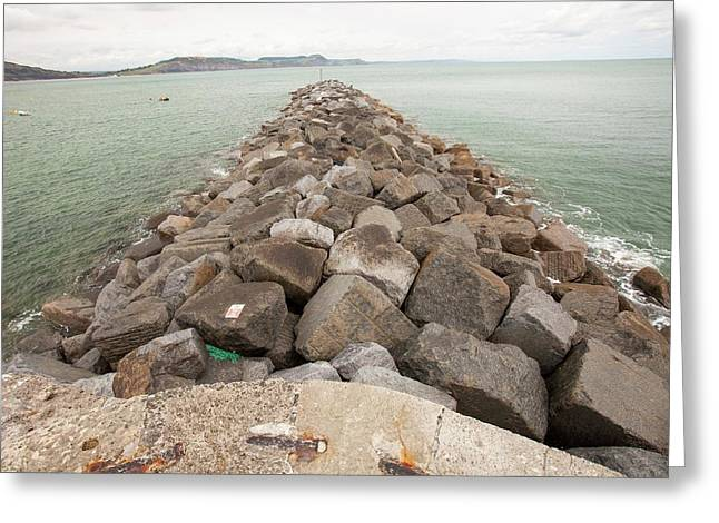 The Cob At Lyme Regis Greeting Card by Ashley Cooper