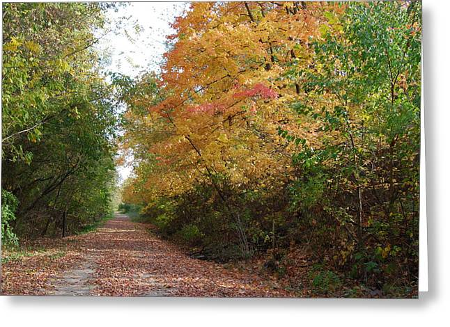 Greeting Card featuring the photograph The Colors Of Fall by Ramona Whiteaker