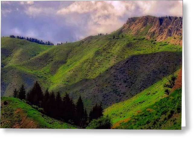 The Colors Of Wyoming In Summer Greeting Card